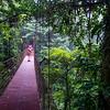 Monteverde Reserve Park canopy bridge