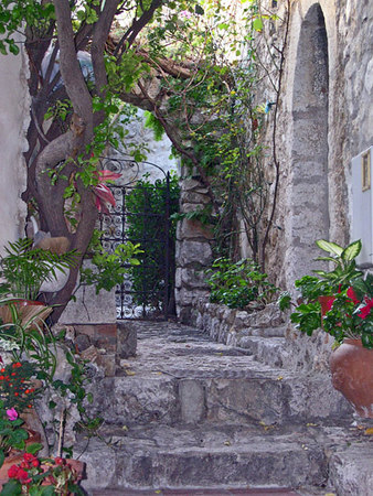 Tropical garden in the Medieval village of Eze - cote D'Azur - France