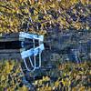 Off-season, Eagleville Lake.