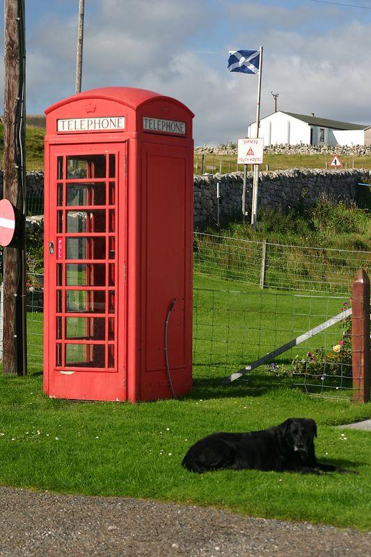 Scottish still life