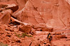 Petroglyphs of Coyote Gulch-0042