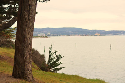 Coyote Point