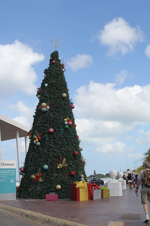 Christmas tree in Cozumel