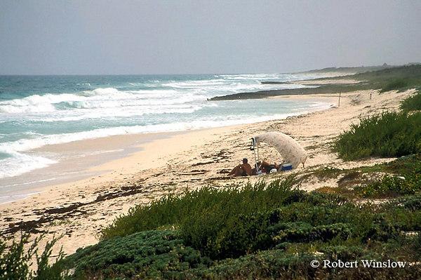 Beach, Eastern Shore, Cozumel Island, State of Quintana Roo, Yucatan Peninsula, Mexico