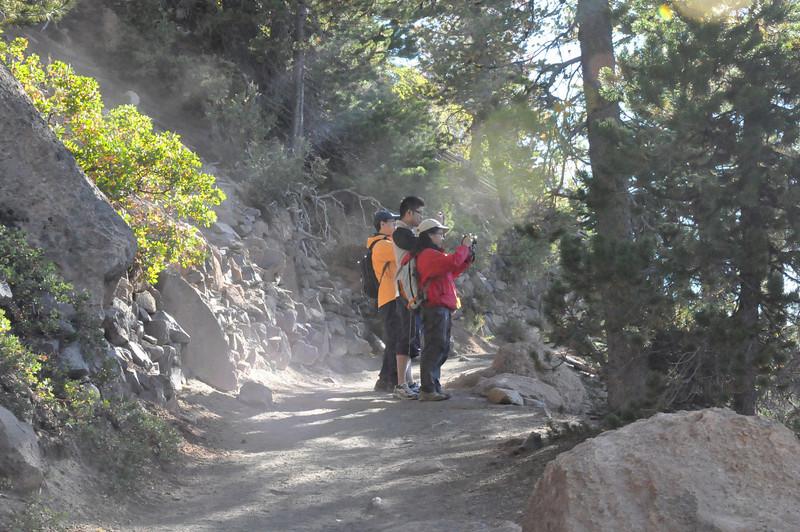 Cleetwood Trail