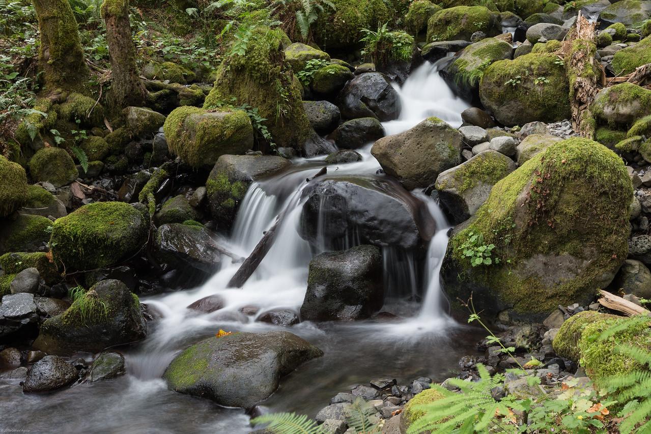 Dry Creek Falls #2