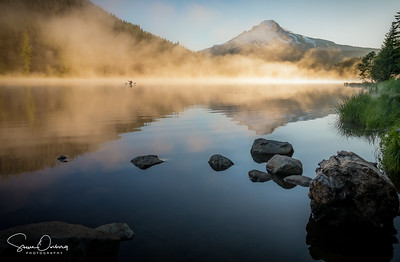 Morning Sunlight & Fog at Trillium Lake
