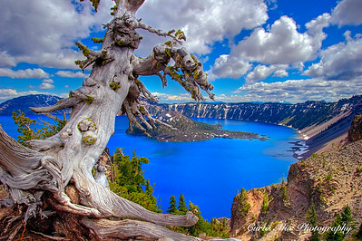 Beautiful day at Crater Lake.