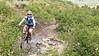 Lupine Trail