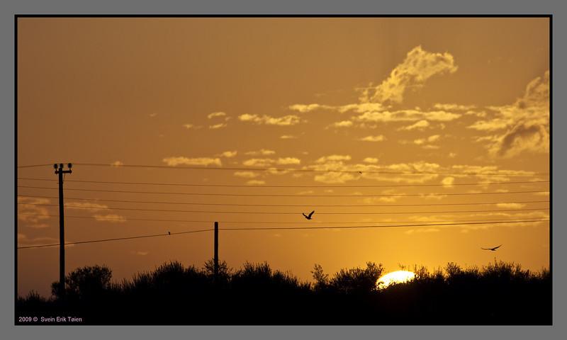 Sunrise, Stalos - II