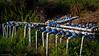 Irrigation system I - Kato Stalos