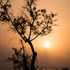 Sunset in sand storm