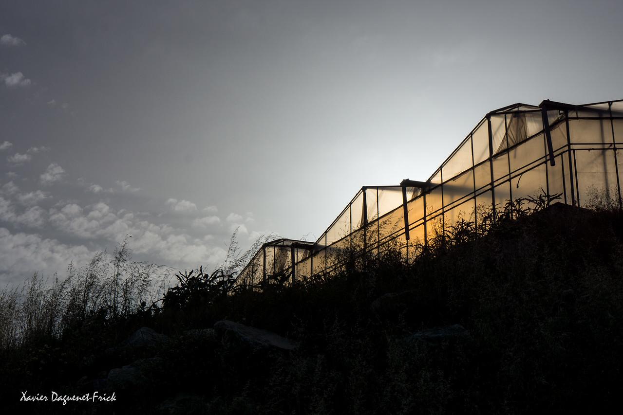 Sunset on greenhouses in Creta