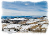 A landscape between Florissant and Cripple Creek, Colorado, in January.