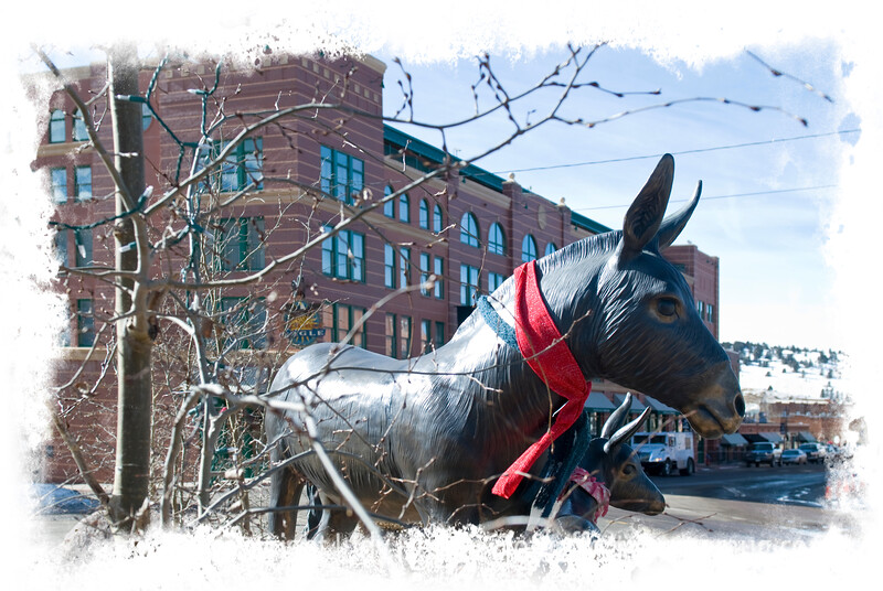 The donkey is a symbol of Cripple Creek, Colorado, because of its usefulness in gold mining.