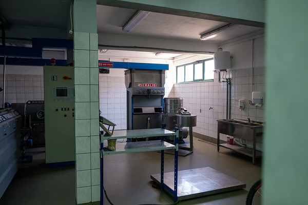 Olive oil production facility