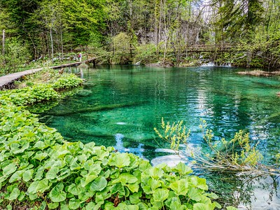 Gorgeous trail in Plitvice