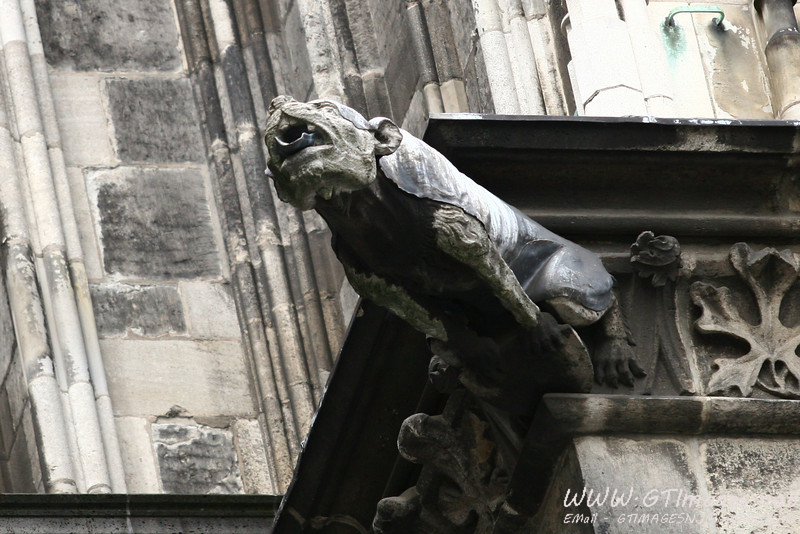 These gargoyles are also functioning gutter spouts. Notice the spout exiting the mouth.