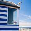 The Cooksey Beach Hut