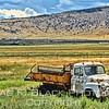 on to colorado. this rusted relic was spotted on hwy. 160 east of del norte.