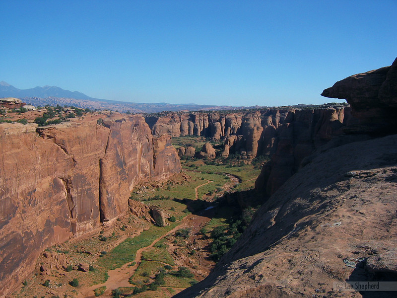 Bull canyon from Gemini Bridges