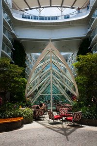 """From """"Central Park"""" on Royal Caribbean's Oasis of the Seas."""