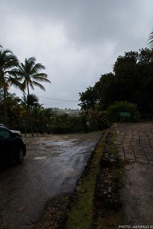 Carribbean Storm
