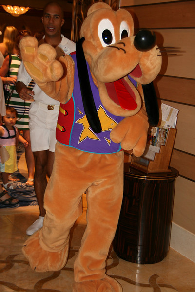 Pluto dressed for Castaway Cay