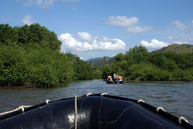 Entering the Mangroves