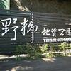 Keelung, Taiwan - Yehliu Geopark