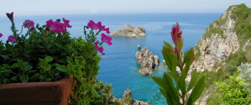 Flowers over the sea. Corfu.