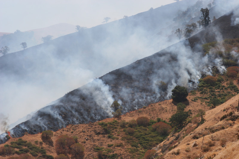 A brush fire along the Grapevine (I-5) on the way to Long Beach