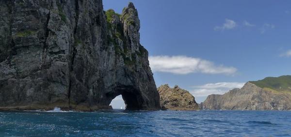 Cruise to New Zealand