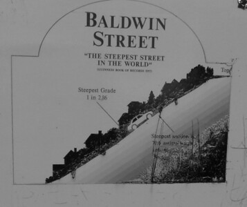 Baldwin Street (109292703)