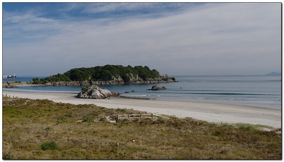 Beach at Tauranga  - Tauranga