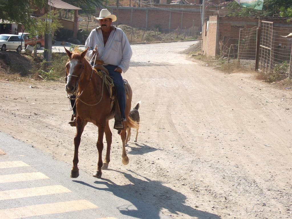 Puerto Vallarta Cowboy