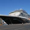 401 Cruise Noordam 60906