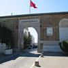 368 Cruise Tunis 60905