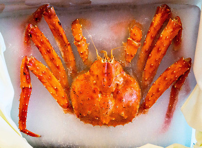 King Crab in ice