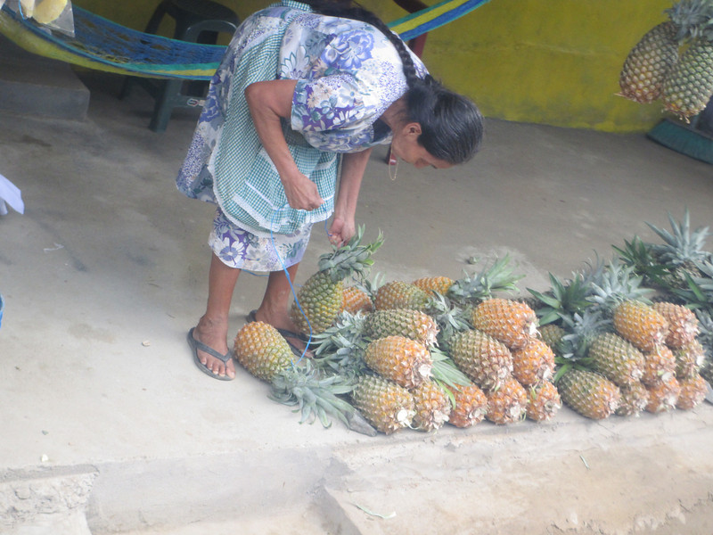 We stopped at a local pineapple shop so our chef could augment our fruit supply on the boat.