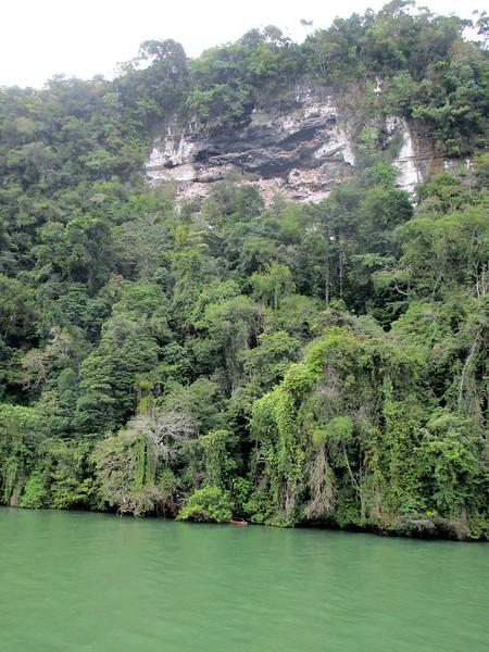 Limestone of Rio Dulce