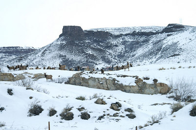 Driving from Colorado Springs to Nederland, January 3, 2007