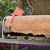 Abandoned Mailbox 02