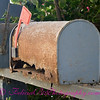Abandoned Mailbox 03