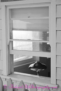 Light In Window bw