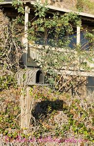 Abandoned Mailbox