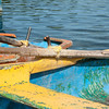 "Boats at Casa de Botes, La Moka.<br /> Prints & downloads.                also see;  <a href=""http://www.blurb.com/b/3586795-cuba"">http://www.blurb.com/b/3586795-cuba</a>"