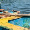 """Boats at Casa de Botes, La Moka.<br /> Prints & downloads.                also see;  <a href=""""http://www.blurb.com/b/3586795-cuba"""">http://www.blurb.com/b/3586795-cuba</a>"""