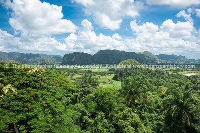 Valle de Vinales with its mogote.BEAUTIFUL LANDSCAPE. Prints & downloads.                also see; www.blurb.com/b/3586795-cuba