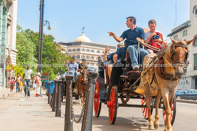 Tourist sdjusts camera on horse and carraige tour of city.